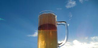 Czech traditional beverage: Local Czech Beer or Becherovka?