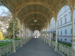 Arrange one day trip from Prague to Karlovy vary or Dresden